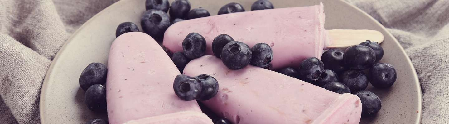 Blueberry Puree Application