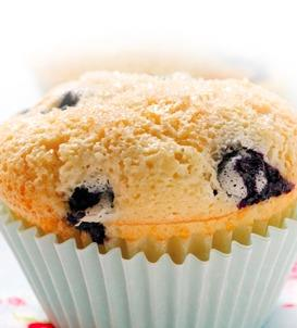 Blueberry Apple Sauce Muffins
